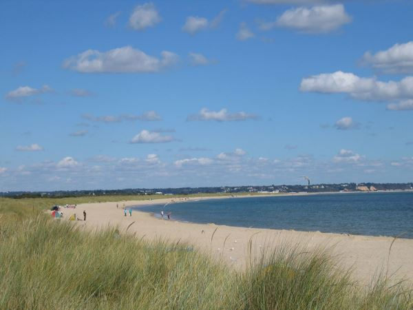Things to do in Studland
