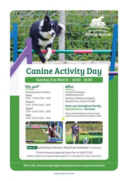 Canine Activity Day