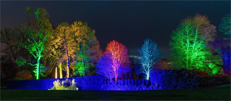 Illuminated Garden at Kingston Lacy