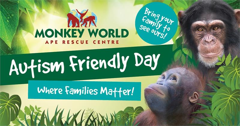 Autism Friendly Day at Monkey World!