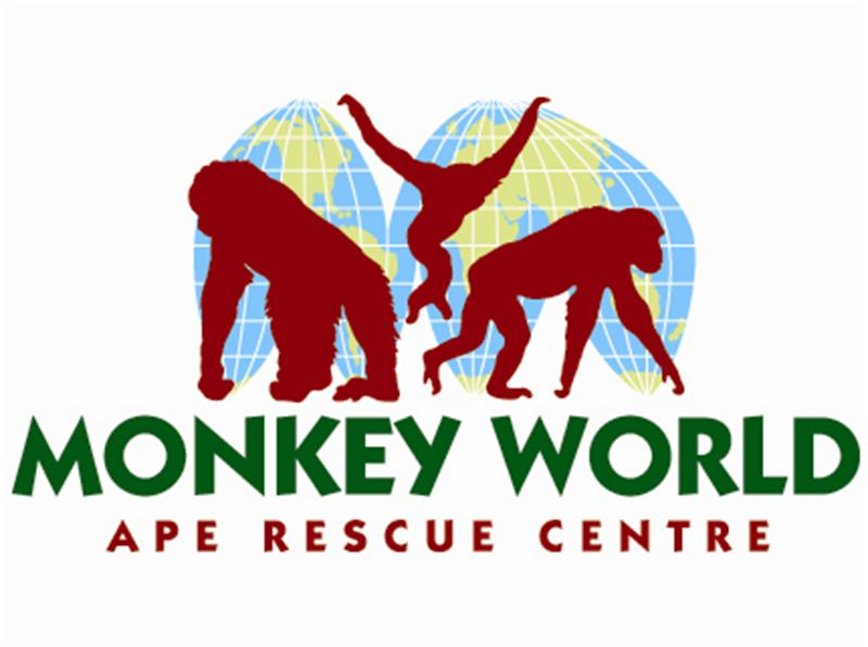 Monkey World - Ape Rescue Centre